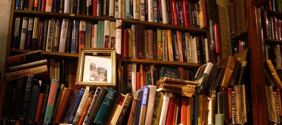 libreria piena di libri
